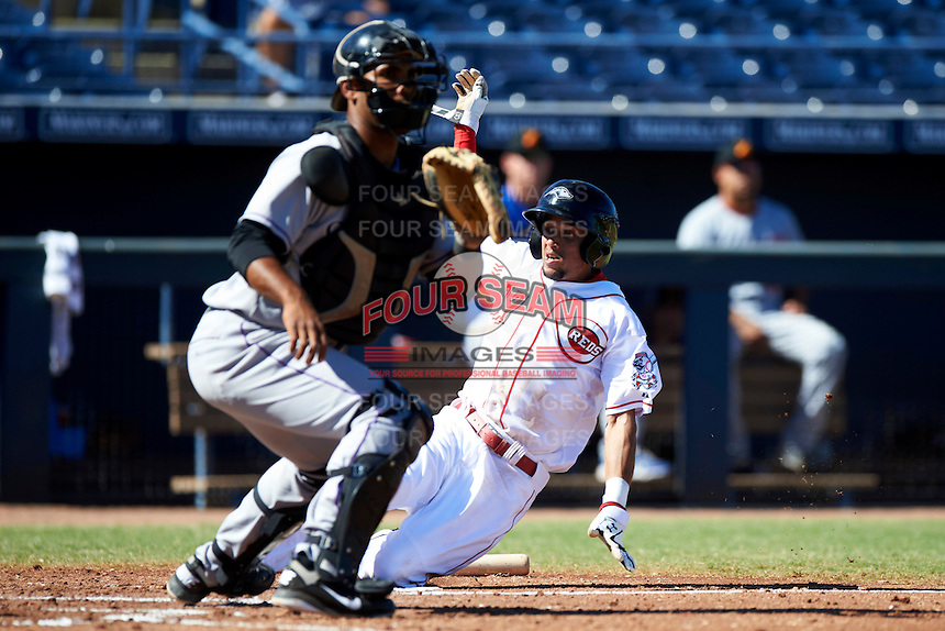 Peoria Javelinas outfielder Billy Hamilton #77, of the Cincinnati Reds organization, slides into home behind catcher Jose Gonzalez after scoring from second base on a ball hit back to the pitcher during an Arizona Fall League game against the Salt River Rafters at Peoria Stadium on October 17, 2012 in Peoria, Arizona.  Salt River defeated Peoria 12-9.  (Mike Janes/Four Seam Images via AP Images)