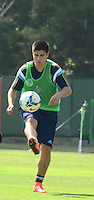SAO PAULO, SP, 19.08.2014 - PALMEIRAS TREINO -  Cristaldo atacante do Palmeiras, durante o treino do Palmeiras na Academia de futebol zona oeste nesta terça-feira 19. (Foto: Bruno Ulivieri - Brazil Photo Press).
