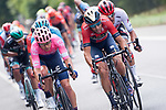 Jonathan Klever Caicedo Cepeda (ECU) EF Education First and Vincenzo Nibali (ITA) Bahrain-Merida in action during Stage 2 of the Deutschland Tour 2019, running 202km from Marburg to Gottinger, Germany. 30th August 2019.<br /> Picture: Mario Stiehl | Cyclefile<br /> All photos usage must carry mandatory copyright credit (© Cyclefile | Mario Stiehl)
