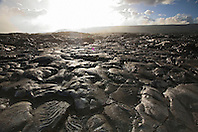 Pahoehoe lava from 1992 to 2003 eruption, Hawaii Volcanoes National Park, Kilauea, Big Island, Hawaii..