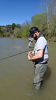 NWA Democrat-Gazette/FLIP PUTTHOFF <br /> Tomek Siwiec (left) and Jonathan Gathright score another double April 26 2018 while fly fishing for suckers on the War Eagle River.