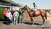 File Gumbo winning at Delaware Park on 8/26/2013