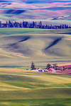 Image of red barn at sunset in wheat fields of Palouse farm country