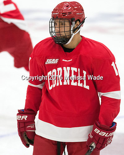 Eric Freschi (Cornell - 11) - The Harvard University Crimson defeated the visiting Cornell University Big Red on Saturday, November 5, 2016, at the Bright-Landry Hockey Center in Boston, Massachusetts.