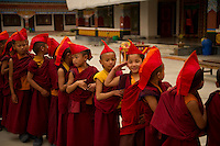 Little Buddhist  monks in a Losar procession in Sikkim India