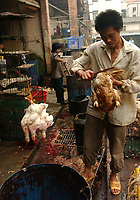 """Birds are unloaded at Guangzhou Snake and Bird Market in this file photo. China's wild animal markets, where live wild animals and reared animals are sold are the source of many viruses that mutate as they """"jump"""" from animals to humans. The coronavirus COVID-19 is thought to have originated in an animal market in China. <br /> By Sinopix Photo Agency"""