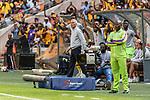 05.01.2019, FNB Stadion/Soccer City, Nasrec, Johannesburg, RSA, Premier League, Kaizer Chiefs FC vs Mamelodi Sundowns FC<br /> <br /> im Bild / picture shows <br /> Ernst Middendorp (Manager / Head Coach / Trainer Kaizer Chiefs FC) celebrates 1:1 <br /> during Matchday Kaizer Chiefs FC vs Mamelodi Sundowns FC, <br /> <br /> Foto © nordphoto / Ewert