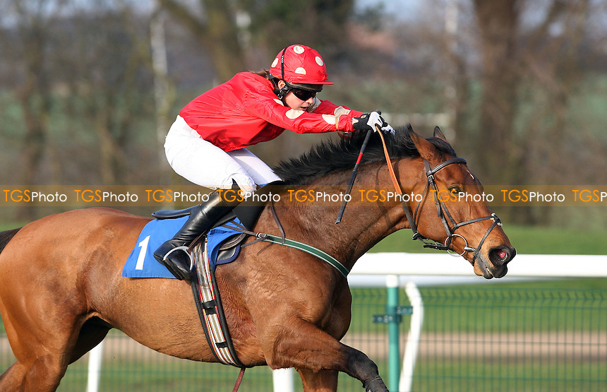 Himrayn ridden by Lucy Alexander in the 15:35 32RedBet.com Handicap Hurdle (Class 5) - Horse Racing at Huntingdon Racecourse, Cambridgeshire - 14/03/12 - MANDATORY CREDIT: Rob Newell/TGSPHOTO - Self billing applies where appropriate - 0845 094 6026 - contact@tgsphoto.co.uk - NO UNPAID USE..