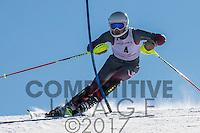 2017 Section 5 Alpine Ski Meet - PM Run