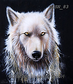 Sandi, REALISTIC ANIMALS, REALISTISCHE TIERE, ANIMALES REALISTICOS, paintings+++++winterwolf,USSN83,#a#, EVERYDAY ,wolf,wolves ,wolf,wolves ,puzzles