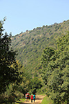 Israel, Upper Galilee, hiking in Nahal Kziv