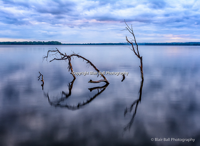 Photos from Reelfoot Lake photo workshop.
