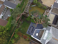 BNPS.co.uk (01202 558833)Pic:PooleCouncil/BNPS<br /> <br /> Council drone shots of the rear of the property on Sandbanks, showing the two trees which Trevor Beale cut back.<br /> <br /> A millionaire who butchered protected trees that blocked out the sunlight to his two balconies and patio has been ordered to pay almost £60,000.<br /> <br /> Trevor Beale breached a Tree Preservation Order (TPO) by destroying the canopies of the 60ft tall Scots Pines at the back of his luxury home in Sandbanks, Poole, Dorset.<br /> <br /> In doing so he improved the natural light on his property's rear patio and two balconies as well as increased the value of his £1.2m property by 3.5 per cent.<br /> <br /> Beale, 58, should have sought permission from the local authority before carrying out work on the mature trees, one of which was in a neighbouring garden.<br /> <br /> He pleaded guilty to two charges of contravening tree preservation regulations at a previous hearing.