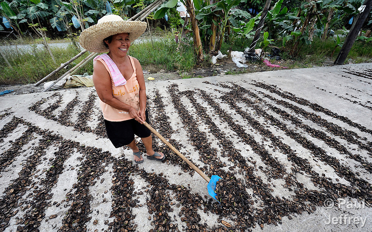A woman turns banana pieces in a drying yard in the village of Baclog in the Compostela Valley on Mindanao Island in the southern Philippines. The dried banana pieces are turned into animal feed.