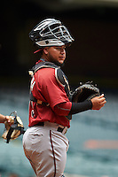 Arizona Diamondbacks catcher Jose Herrera (15) during an instructional league game against the San Francisco Giants on October 16, 2015 at the Chase Field in Phoenix, Arizona.  (Mike Janes/Four Seam Images)