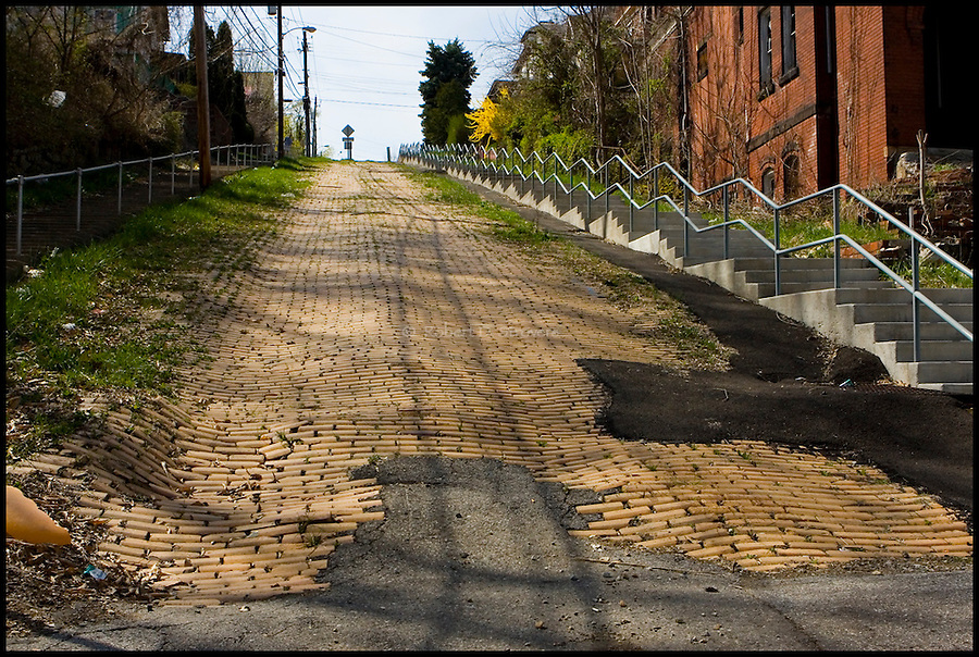 Pittsburgh's Neighborhoods - Donora Slopes