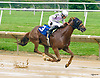 Notorious Cowboy winning at Delaware Park on 6/17/17