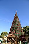 Christmas in Bethlehem, Nativity scene by the Christmas tree in Manger square