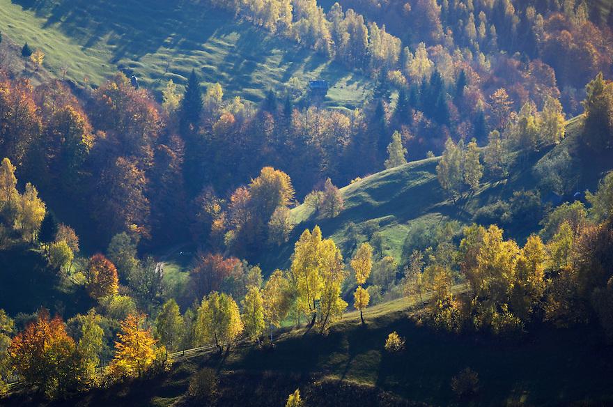 Cultural landscape in autumn, National Park Piatra Craiului, Transylvania, Southern Carpathians, Romania