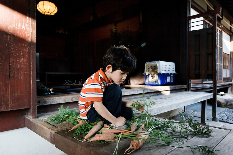 Hino, Shiga prefecture, October 6 2013 - Skyler Moore playing with a caterpillar. He found it in carots freshly gathered in the vegetable garden of the 150-year-old traditional house renovated by Mr Austin Moore and his wife. CREDIT : Jeremie Souteyrat for the Wall Street Journal. <br /> SLUG : KYOTO-Austin Moore