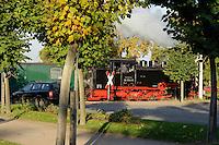 """Kleinbahn """"rasender Roland"""" in Baabe auf Rügen, Mecklenburg-Vorpommern, Deutschland"""