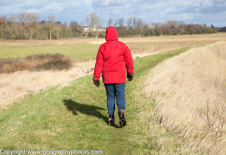 Woman wearing red winter jacket walking on raised coastal flood defence dyke embankment, Hollesley Bay, Suffolk, England, UK