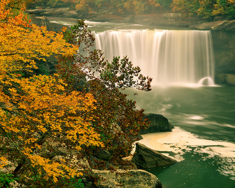 Foggy morning light on fall color along the falls on the Cumberland River; Cumberland Falls State Park, KY
