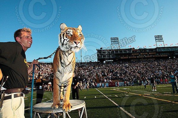 Aug 3, 2007; Hamilton, ON, CAN; Winnipeg Blue Bombers play the Hamilton Tiger-Cats at Ivor Wynne Stadium. The Tiger-Cats defeated the Blue Bombers 43-22. Mandatory Credit: Ron Scheffler.