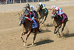 Whitmore (no. 3) wins the Forego Stakes (Grade 1), Aug. 25, 2018 at the Saratoga Race Course, Saratoga Springs, NY.  Ridden by  Ricardo Santana, Jr., and trained by Ron Moquett, Whitmore finished 1 1/2 lengths in front of City of Light (No. 8).  (Bruce Dudek/Eclipse Sportswire)