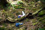 Items of clothing and other belongings are scattered among the undergrowth in Aokigahara Jukai, better known as the Mt. Fuji suicide forest, which is located at the base of Japan's famed mountain west of Tokyo, Japan.