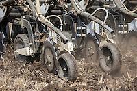 Drilling oil seed rape, applying liqiud nitrogen and slug pellets with a 9m Stripcat drill - Lincolnshire, August