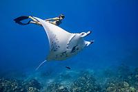 reef manta ray, Manta alfredi, female, named, Vallaray, and free diver, Sandy Hammel, Veto's Reef, Kekaha Kai State Park, Kona Coast, Big Island, Hawaii, USA, Pacific Ocean, MR 489