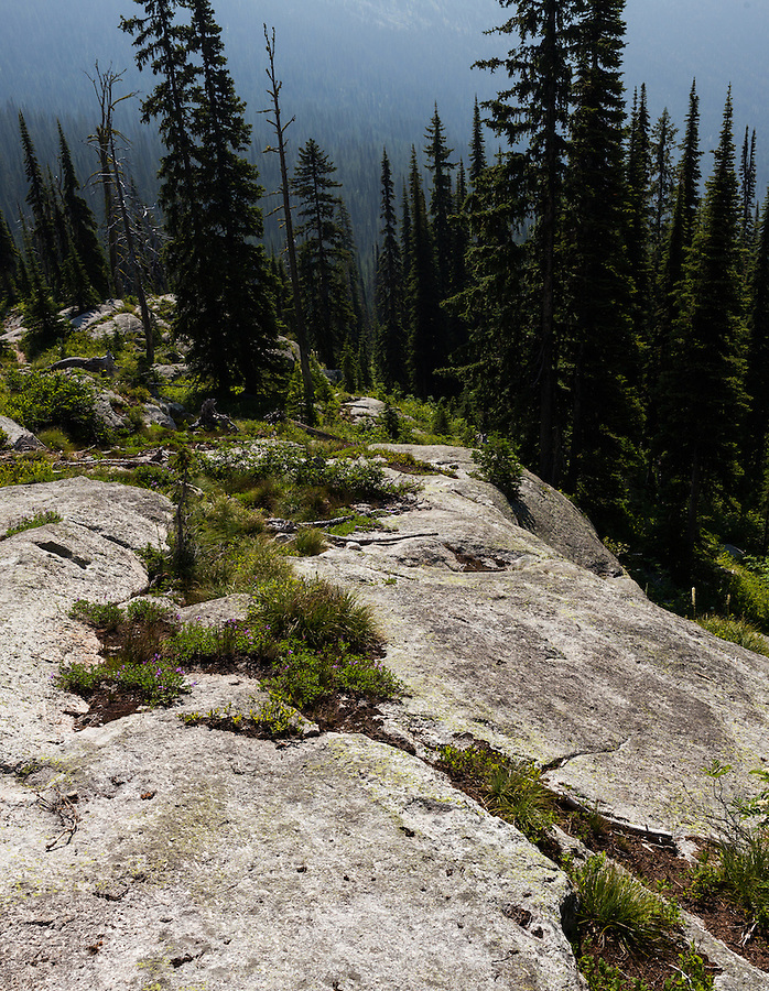 The trail to Harrison Lake in Northern Idaho involves some routefinding while ascending out of the treeline into the alpine.