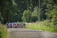 peloton up the cobbled Mont Saint Laurent (max 17%)<br /> <br /> Eneco Tour 2013<br /> stage 2: Ardooie - Vorst (Brussel)<br /> 177km