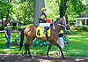 Ghost Lily in The International Ladies FEGENTRI  race at Delaware Park on 6/13/16