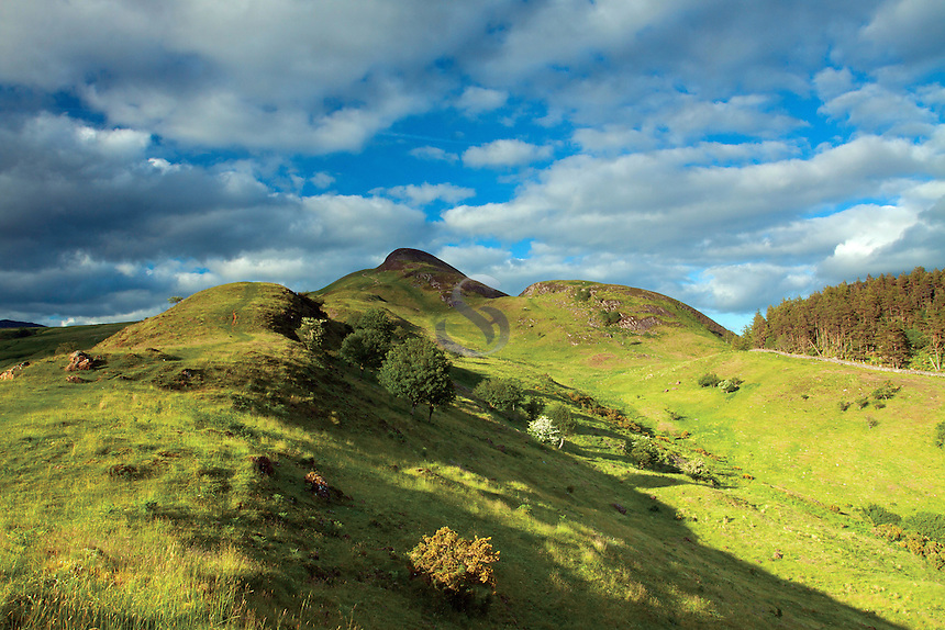 Conic Hill from Druim nam Buaraich, Loch Lomond and the Trossachs National Park
