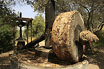 Israel, Shephelah. Ancient Olive press in Neot Kedumim, Biblical Landscape Reserve