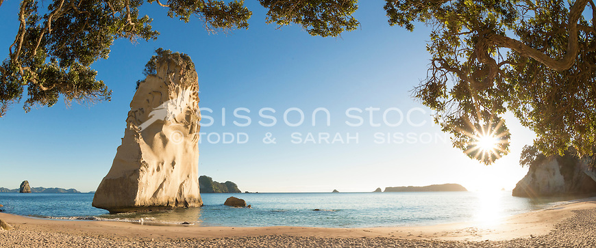 Starburst through trees at Cathedral Rock, Coromadel, New Zealand - stock photo, canvas, fine art print