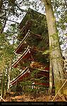 Gojunoto Five Story Pagoda Rear View through Cryptomeria Forest Nikko Toshogu Shrine Nikko Japan