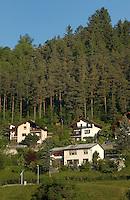 Houses chalets against pine tree background,Imst district, Tyrol/Tirol, Austria, Alps.