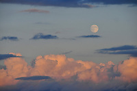 Full moon above sunset-lit clouds over the Sammamish Plateau, Washington State,