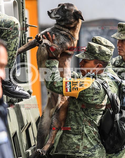 Militares y perros  pastor Aleman se encuentran en la zona cercana al edificio de la colonia &Aacute;lvaro Obreg&oacute;n #286, donde se busca rescatar 46 personas con o sin vida, Ciudad de Mexico a  22 sep 2017.<br /> ( Foto: Luis Gutierrez/NortePhoto.com)<br /> <br /> &bull;&bull;&bull;&bull; #sismo #terremoto #terremotoMexico #mexico #nortephoto #photojurnalism