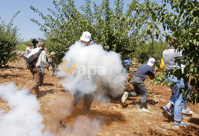 Palestinian and foreign activists run from a stun grenade thrown by Israeli soldier during a demonstration against Israeli settlements, in the West Bank village of Beit Omar, near Hebron, Saturday, July 17, 2010. Photo by Mamoun Wazwaz