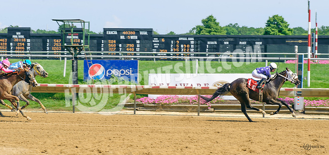 Miss Modela winning at Delaware Park on 7/17/17