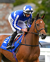 Come on Leicester ridden by Ryan Moore goes down to the start of The Shadwell Dick Poole Fillies' Stakes      during the Bathwick Tyres & EBF Race Day at Salisbury Racecourse on 6th September 2018