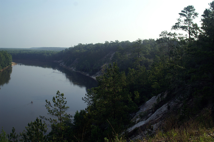 Looking north along the Apalachicola River in Florida from Alum Bluff.