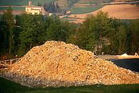 Discarica. Rubbish dump..