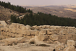 Israel, Southern Hebron Mountain, archaeological remains at Tel Yatir, the Church