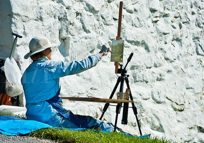 Plein air artist painting a landscape.
