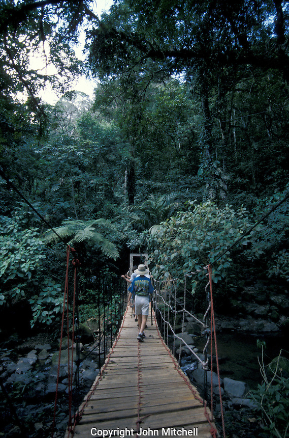 Hikers crossing a suspension bridge in the El Macho Ecological Reserve in El Valle de Anton, Panama